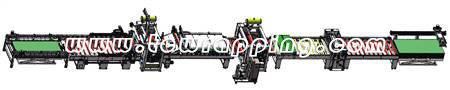 TC-PUR(700/1350)全自动高光平贴生产线